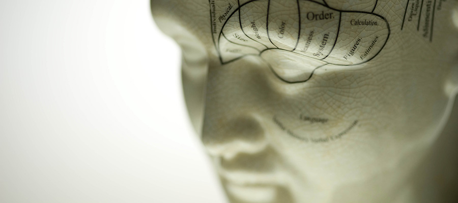 Phrenology Sculpture